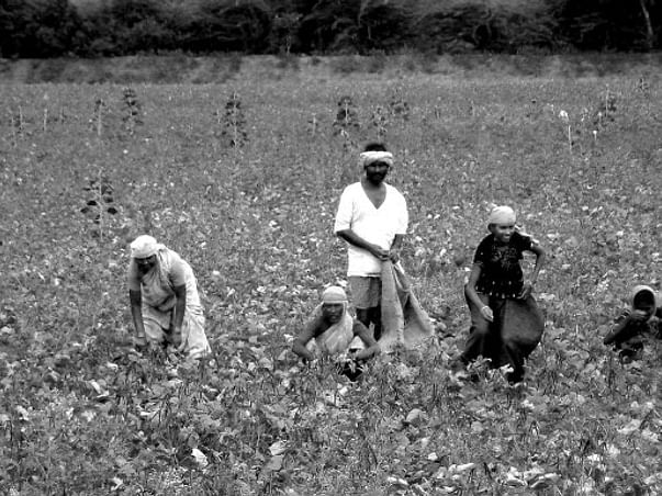 Fundraising to support our farmers since this is our responsibility