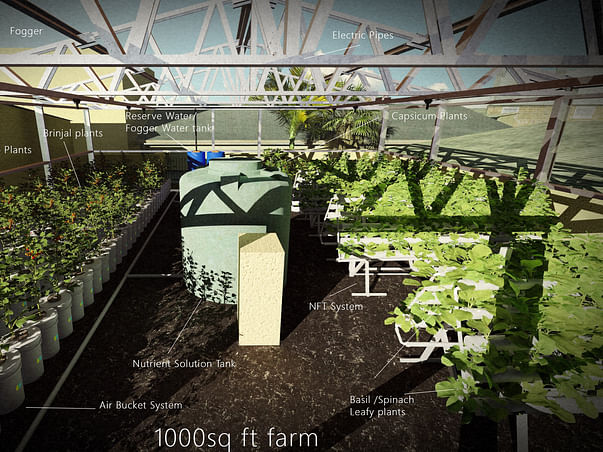 Facilitate urban farming in chennai to supply for old age homes