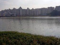 Bengaluru Marathon: Munnekolalu Lake Cleanup, Brookfield