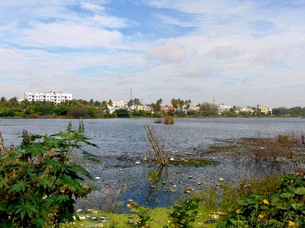 Peace Ride: Restoration of Horamavu Lake, KR Puram
