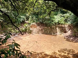 Peace Ride: Rejuvenation of Patalaganga Pond