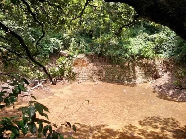 Bengaluru Marathon: Rejuvenation of Patalaganga Pond
