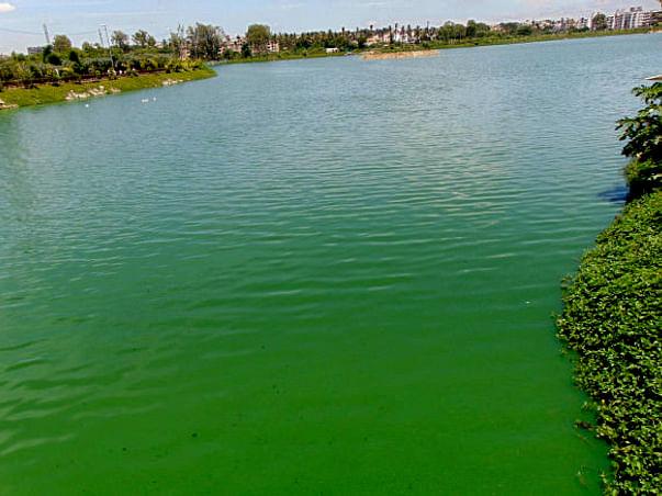 Peace Ride: Restoration of Allalasandra Lake
