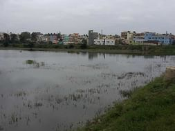 Peace Ride: Devasandra Lake Rejuvenation, K.R.Puram