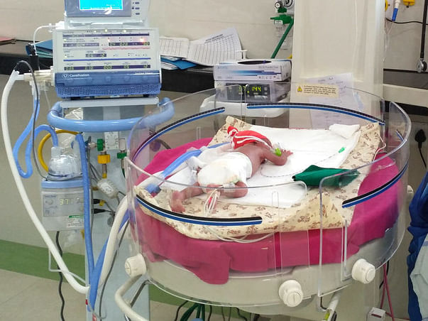 These 10-day-old twins need your help to survive. Save them.