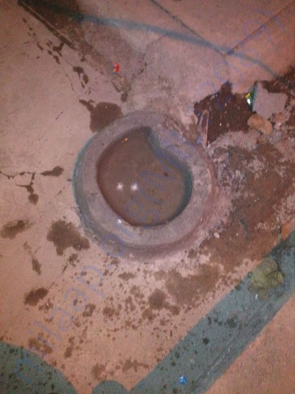 New water bowls made for summer