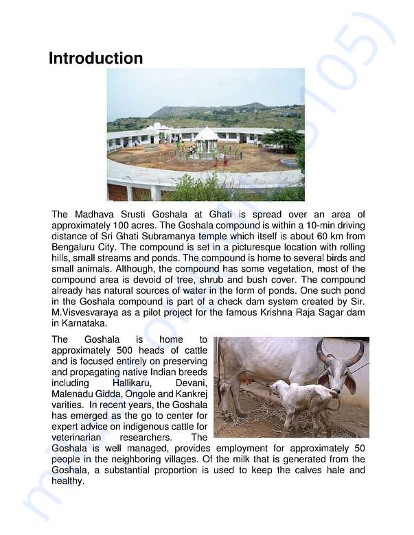 Project Report Page 2