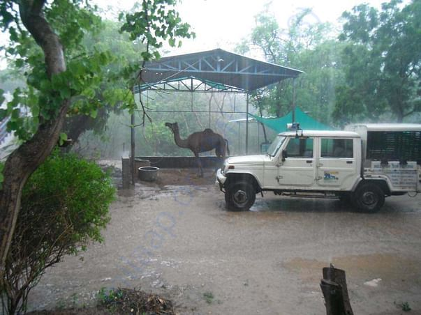 HIS campus during monsoon.