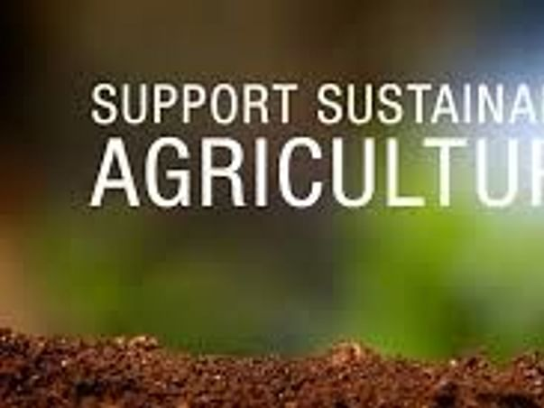 To Support Agriculture