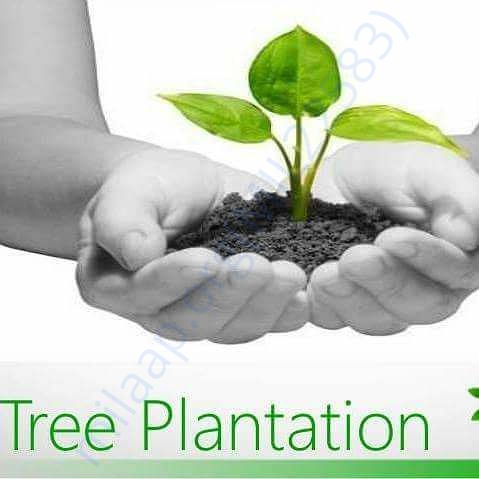 www.facebook.com/Kartavya-Tree-Plantation-Group-112711256015415/