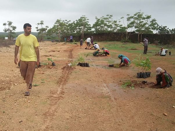 Help Tree Help Yourself -  Tree Planting  and Growing