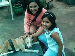 A New Life for Nanuk- The Dog
