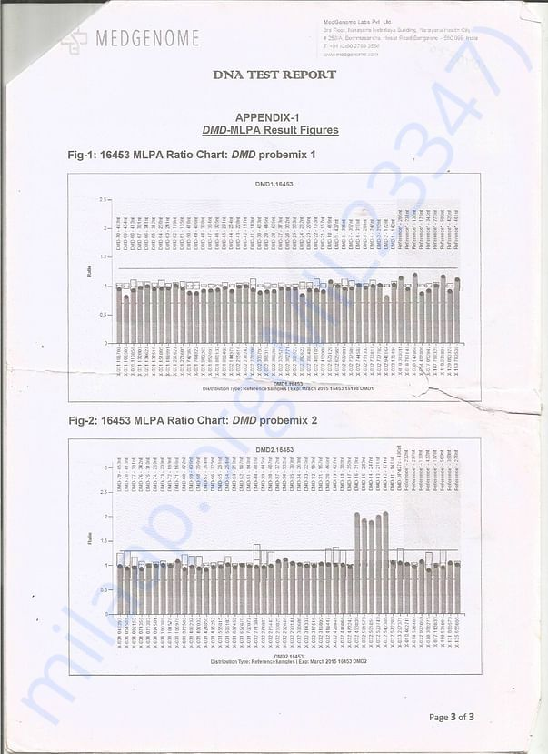DNA Report 3rd page