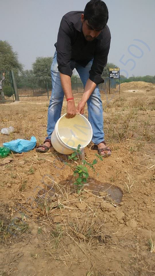 My friend manually watering plants we had planted near Water Body