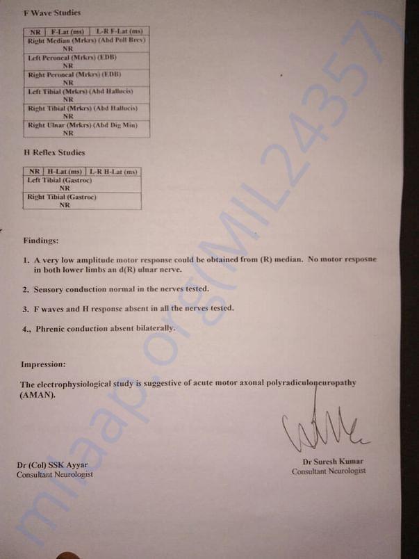 NERVE STUDY PAGE-4