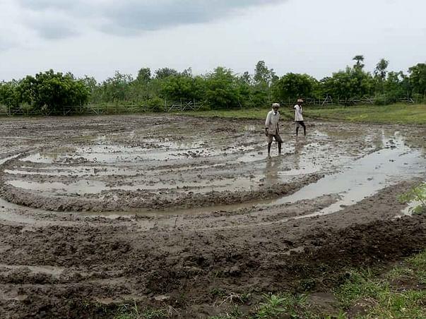Support Sristi Foundation Run a Sustainable Organic Farm