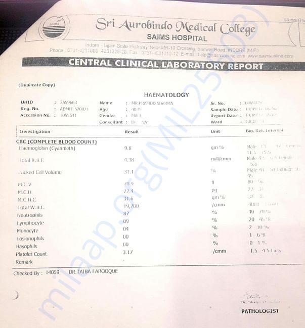 Serum Creatinine Report