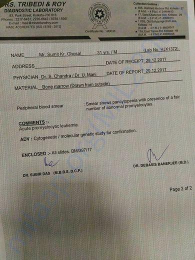 Pathological diagnosis report