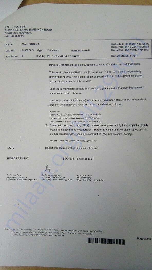Renal Pathology Report 2/2