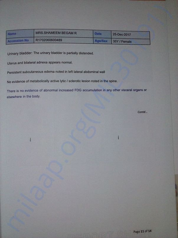 scan report 11