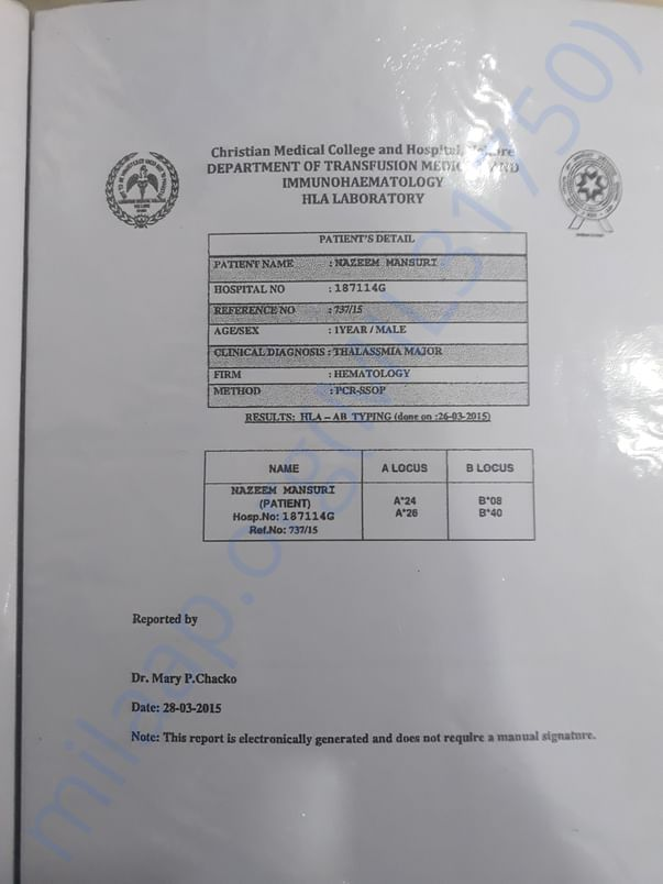 This is THALASSEMIA MAJOR REPORT