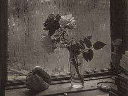 A Rose Seller In Prague | Short Film by Rajdeep Dhanuka | Crowdfunding
