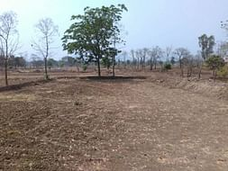 Help Us For Borewell Drilling For Organic Farm