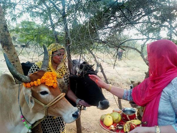 New Beginning for Kavita and Rajesh's Dream – Shri Gau Rashtram