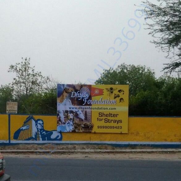 Dhyan Foundation's new stray animal shelter under construction