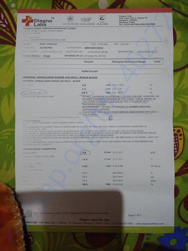 Thalassemia test report