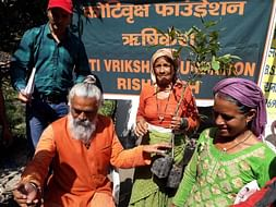 Support Koti Vriksha Foundation for Himalayan Tree Plantation.