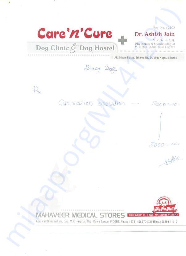 various vet bills from last month