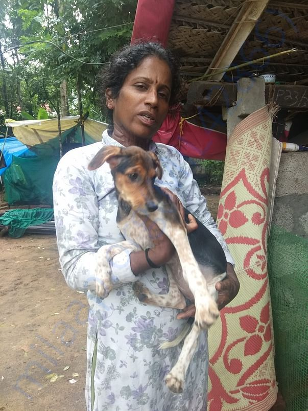 SUNITHA with one of her rescues