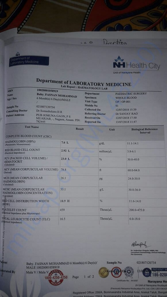 Banglore Narayana hospital report