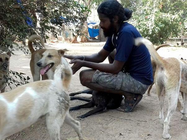 Help Kannan Krishnan for Integrated Animal Care Centre @ Auroville