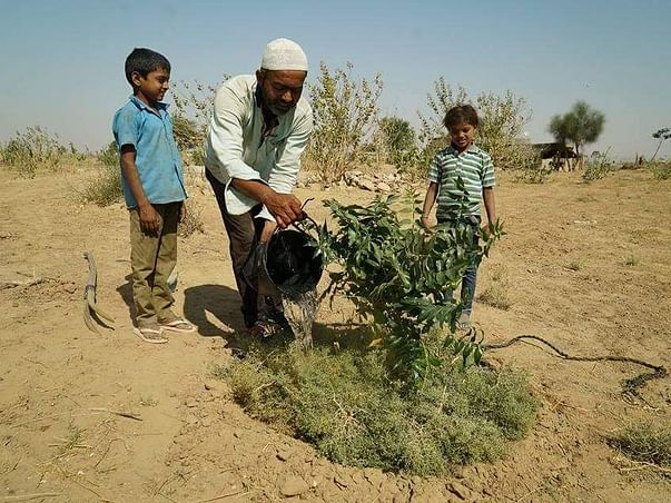 Give Water To Natural Farm In Indian Desert