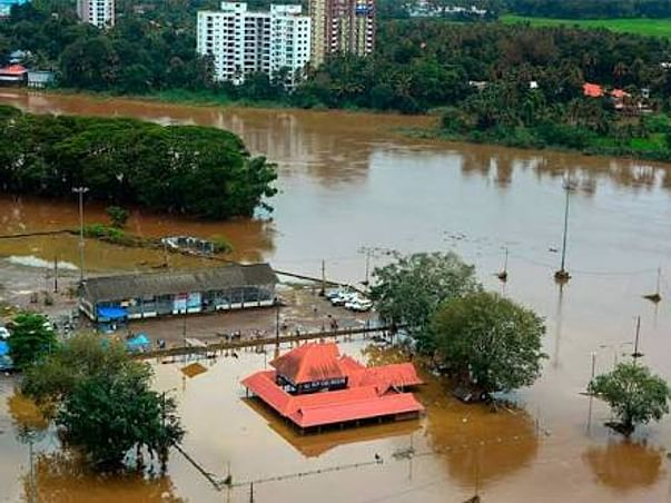 Let's Stand Strong for Kerala ! (for Suffering Animals and Humans)