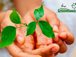 Help Project Green Hands to plant 1000 trees