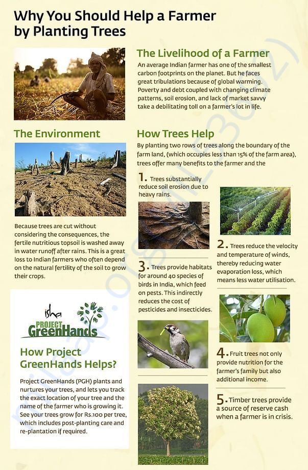 Why Should You Help A Farmer By Planting Trees