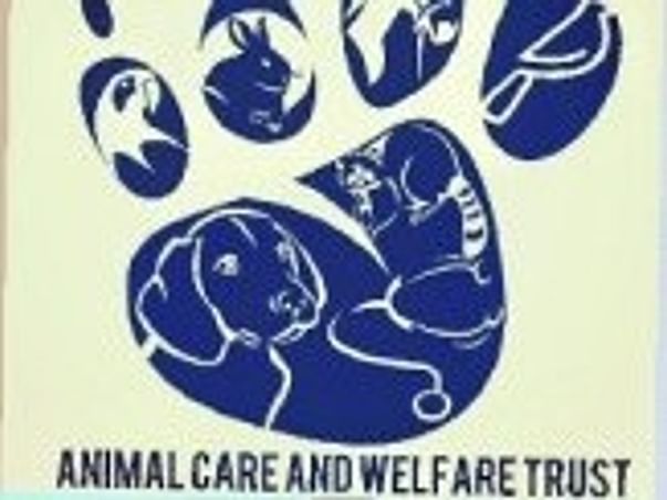 Help Sick and Injured Animals Get Ambulance Service on the Spot