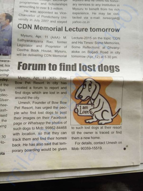 lost and found forum