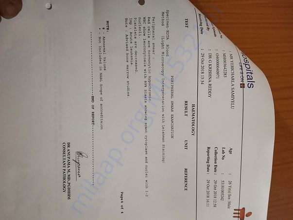 Report with acute leukemia diagnosis confirmation