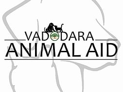 Help Us Buy Ambulance For Stray Animals
