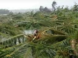Save My Village From Natural Disaster Gaja Cyclone