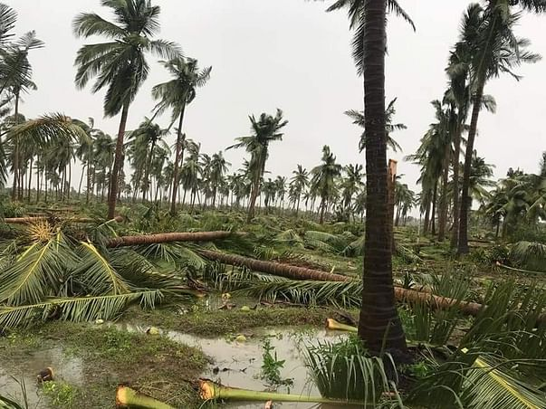 Help My Family Recover from Cyclone 'Gaja'