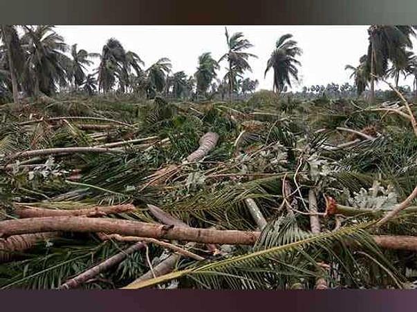 SAVE DELTA   Cyclone Relief Campaign