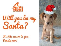 Be the Santa for ALAI Rescues!