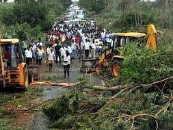Help Us Save Delta | Cyclone Relief Campaign