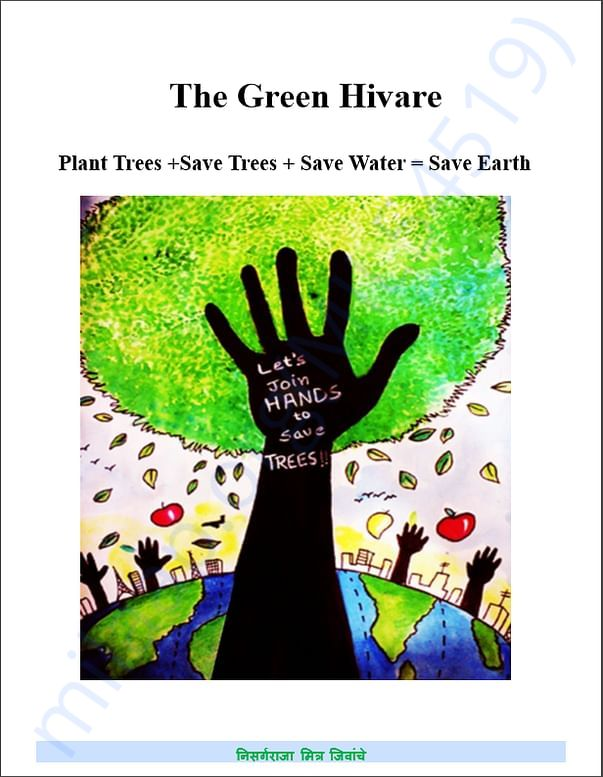 About Green Hivare 1