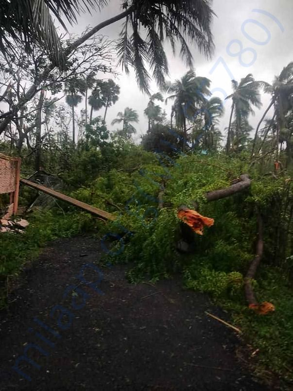 Cyclone Gaja impact in Naluvethpathy
